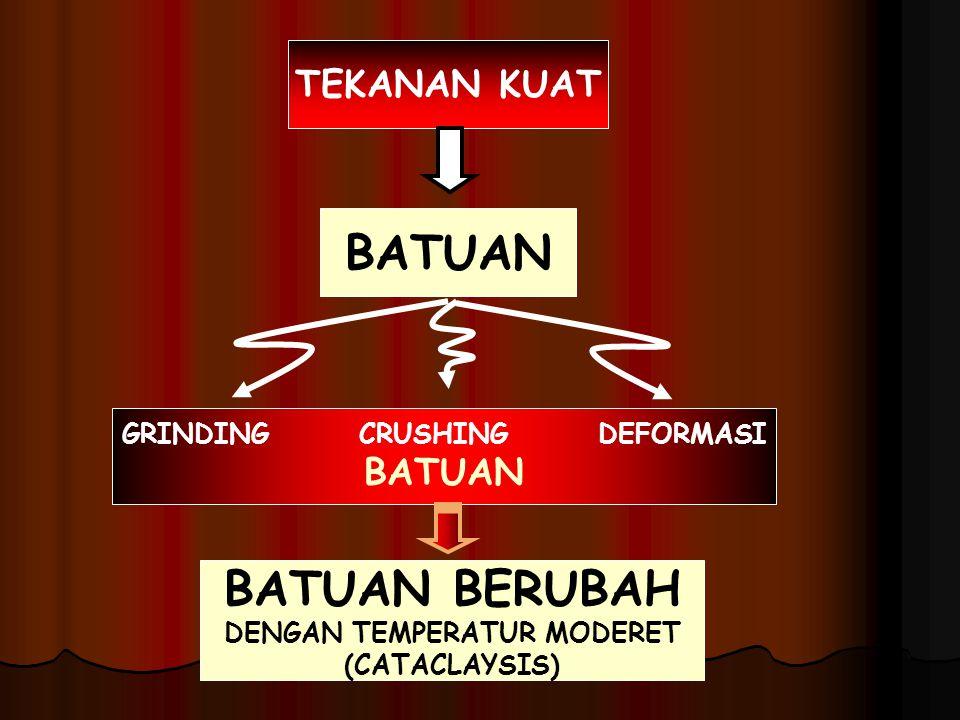 GNEISS = SKISS + MINERAL FELSPAR (MIGMATIT)  GNEISS + MAGMA GRANIT