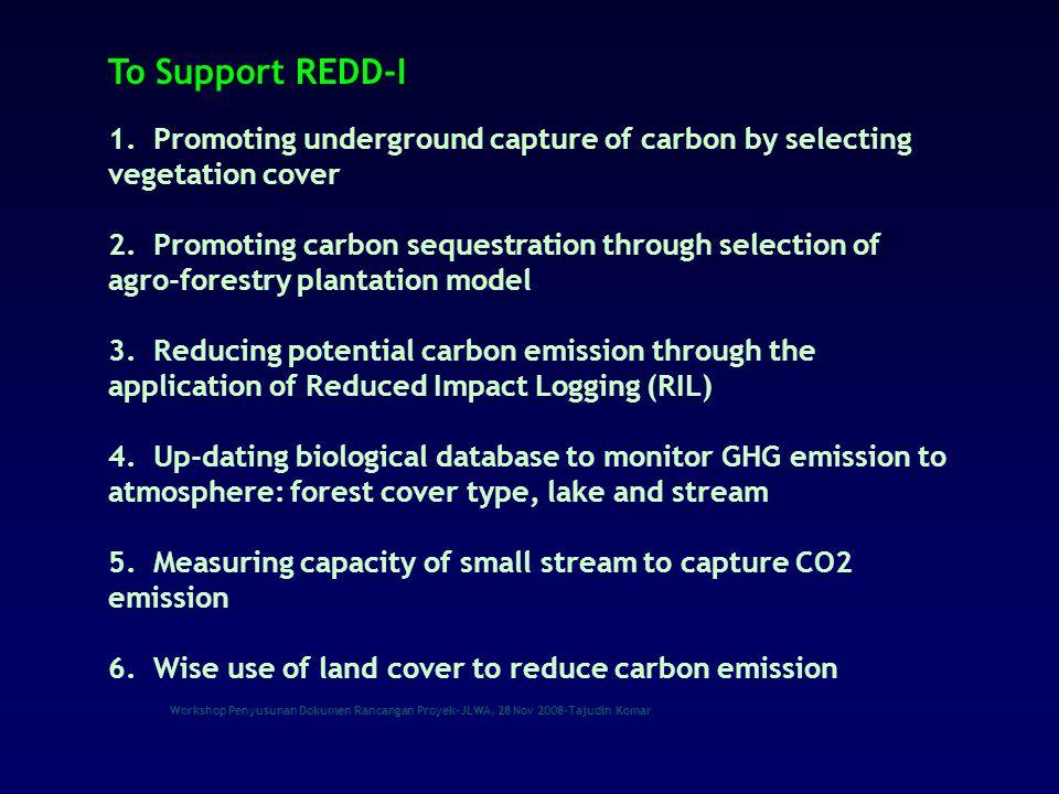 Workshop Penyusunan Dokumen Rancangan Proyek-JLWA, 28 Nov 2008-Tajudin Komar KEANEKARAGAMAN HAYATI  Keanekaragaman tertinggi ke dua setelah Brazil - 28 000 jenis tumbuhan berbunga - 122 jenis bambu - 400 jenis Dipterocarpaceae