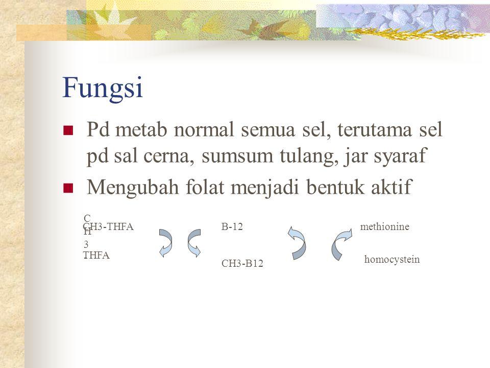 Fungsi Pd metab normal semua sel, terutama sel pd sal cerna, sumsum tulang, jar syaraf Mengubah folat menjadi bentuk aktif CH3- CH3- CH3-THFA THFA B-1