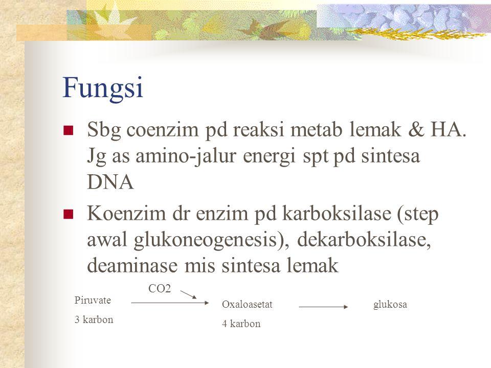 Fungsi Sbg coenzim pd reaksi metab lemak & HA. Jg as amino-jalur energi spt pd sintesa DNA Koenzim dr enzim pd karboksilase (step awal glukoneogenesis