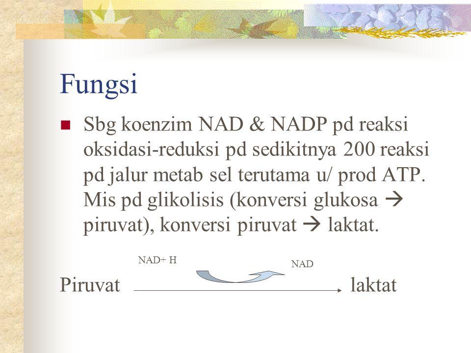 Fungsi Sbg koenzim NAD & NADP pd reaksi oksidasi-reduksi pd sedikitnya 200 reaksi pd jalur metab sel terutama u/ prod ATP. Mis pd glikolisis (konversi