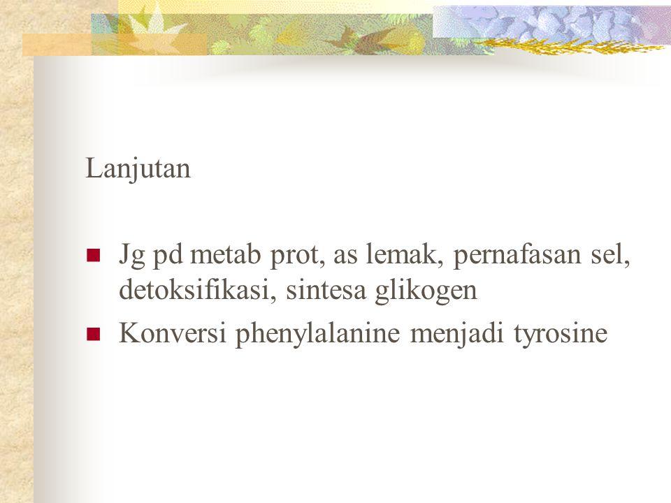 Lanjutan Jg pd metab prot, as lemak, pernafasan sel, detoksifikasi, sintesa glikogen Konversi phenylalanine menjadi tyrosine