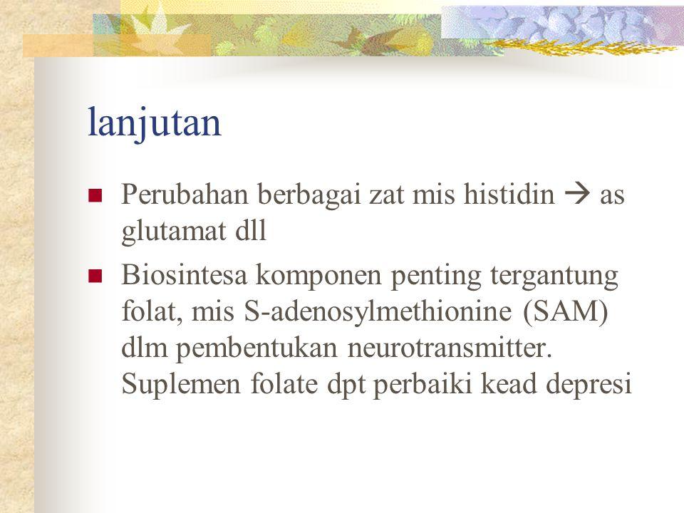 lanjutan Perubahan berbagai zat mis histidin  as glutamat dll Biosintesa komponen penting tergantung folat, mis S-adenosylmethionine (SAM) dlm pemben