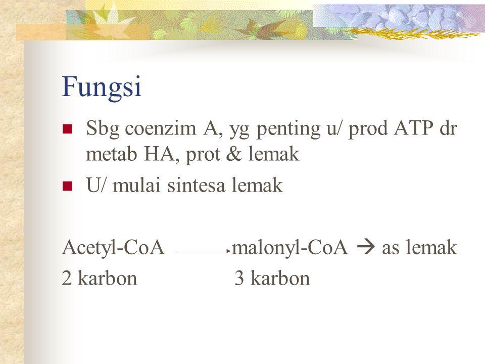 Fungsi Sbg coenzim A, yg penting u/ prod ATP dr metab HA, prot & lemak U/ mulai sintesa lemak Acetyl-CoA malonyl-CoA  as lemak 2 karbon 3 karbon