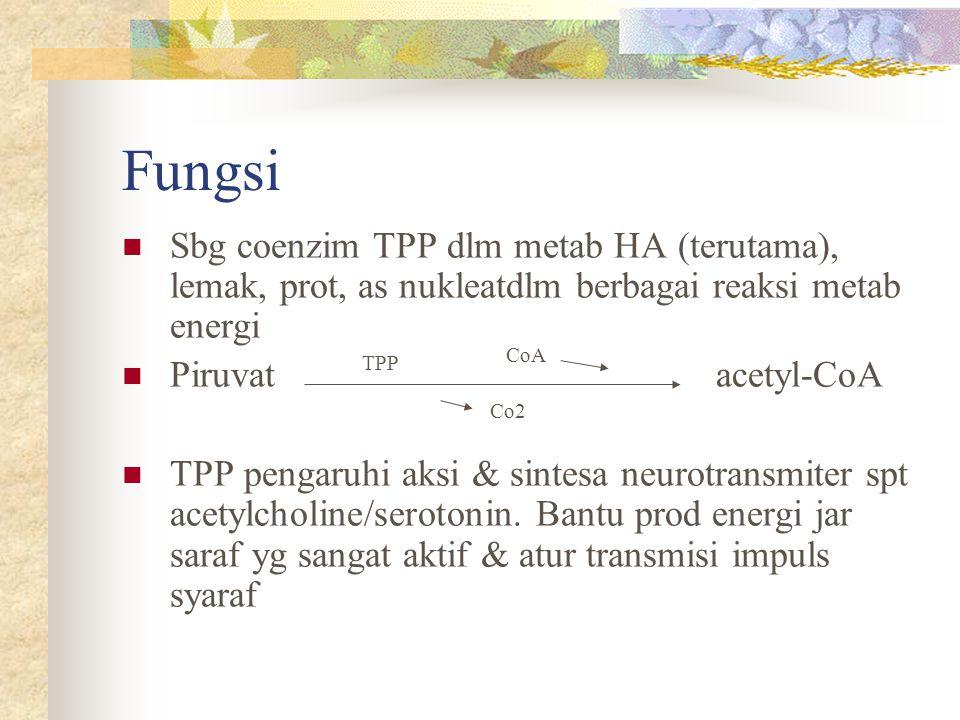 Fungsi Sbg coenzim TPP dlm metab HA (terutama), lemak, prot, as nukleatdlm berbagai reaksi metab energi Piruvat acetyl-CoA TPP pengaruhi aksi & sintes