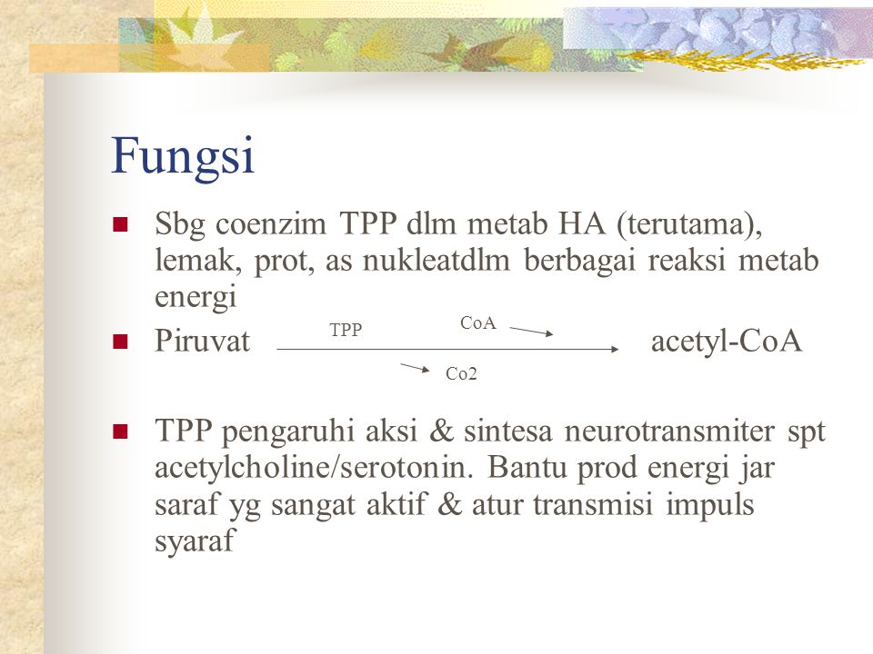 Berpartisipasi dlm pemecahan glikogen & prod glukosa dr as amino (glukoneogenesis) Dlm konversi tryptophan  niacin & sintesa methionine dr homocysteine Pd proses dekarboksilase, mis tryptophan Pd proses transulfurase, mis cysteine Sintesa neurotransmitter mis serotonin, dopamine (DOPA), GABA, norepenephrine