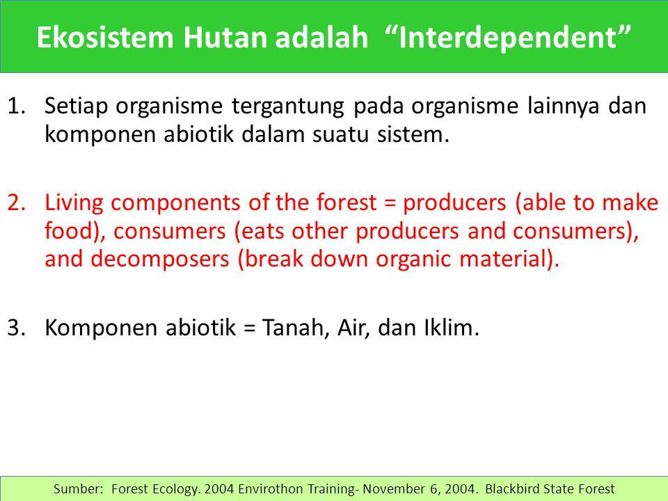 Sumber: HTI Pinus di wilayah Pujon, rumput gajah sebagai penutup muka tanah. Smno.2012