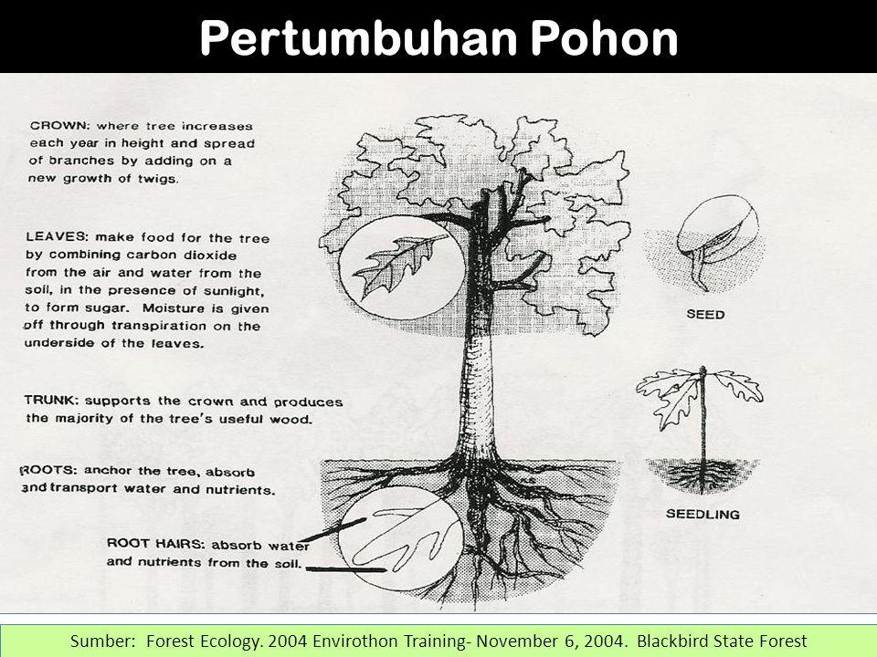 Sumber: Forest Ecology.2004 Envirothon Training- November 6, 2004.