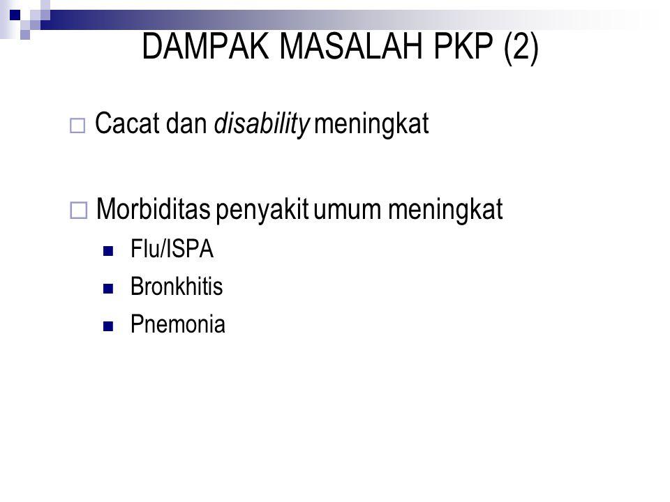 DAMPAK MASALAH PKP (2)  Cacat dan disability meningkat  Morbiditas penyakit umum meningkat Flu/ISPA Bronkhitis Pnemonia
