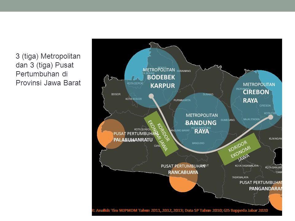 Pedoman pelaksanaan pengelolaan pembangunan dan pengembangan Metropolitan dan Pusat Pertumbuhan tersebut dituangkan dalam dokumen Rencana Induk Pengembangan (Renip) di masing- masing Metropolitan dan Pusat Pertumbuhan yang bersangkutan.