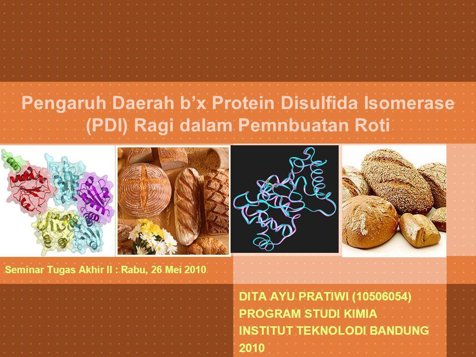 Pengaruh Daerah b'x Protein Disulfida Isomerase (PDI) Ragi dalam Pemnbuatan Roti Seminar Tugas Akhir II : Rabu, 26 Mei 2010 DITA AYU PRATIWI (10506054