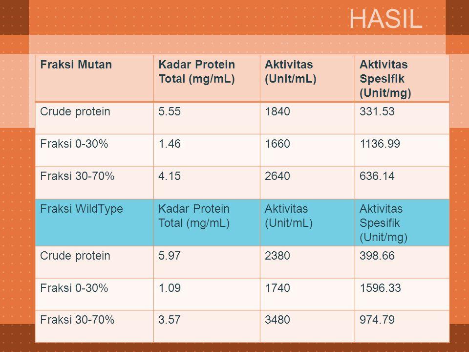 Fraksi MutanKadar Protein Total (mg/mL) Aktivitas (Unit/mL) Aktivitas Spesifik (Unit/mg) Crude protein5.551840331.53 Fraksi 0-30%1.4616601136.99 Fraks