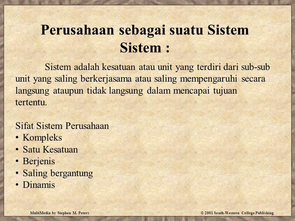 Perusahaan sebagai suatu Sistem Sistem : MultiMedia by Stephen M.