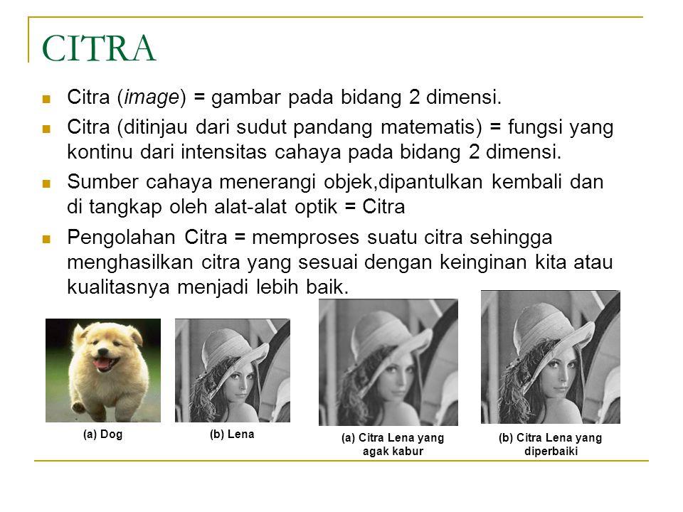 CITRA Citra (image) = gambar pada bidang 2 dimensi. Citra (ditinjau dari sudut pandang matematis) = fungsi yang kontinu dari intensitas cahaya pada bi