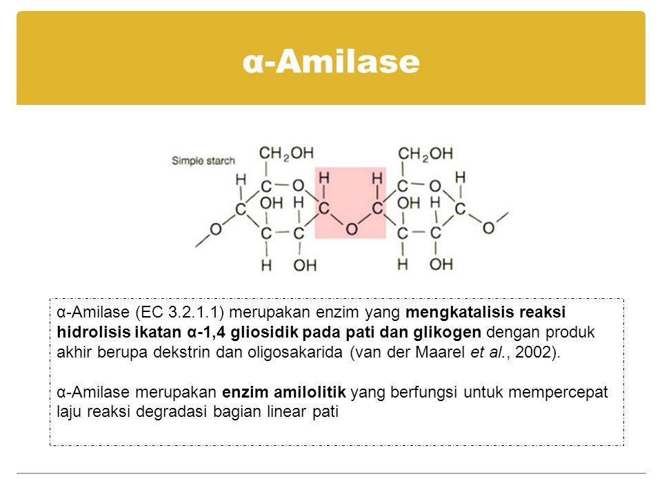 Kegunaan α-Amilase industri bioetanol untuk memecah pati menghasilkan oligosakarida dan dekstrin industri deterjen, untuk meningkatkan kemampuan deterjen dan menjadikan deterjen lebih ramah lingkungan industri kertas dan pulp, untuk memodifikasi pati dari kertas industri pemrosesan pati menjadi oligosakarida dan sirup glukosa