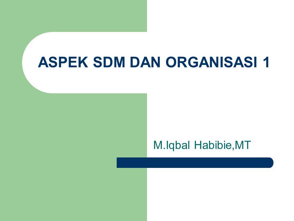 ASPEK SDM DAN ORGANISASI 1 M.Iqbal Habibie,MT