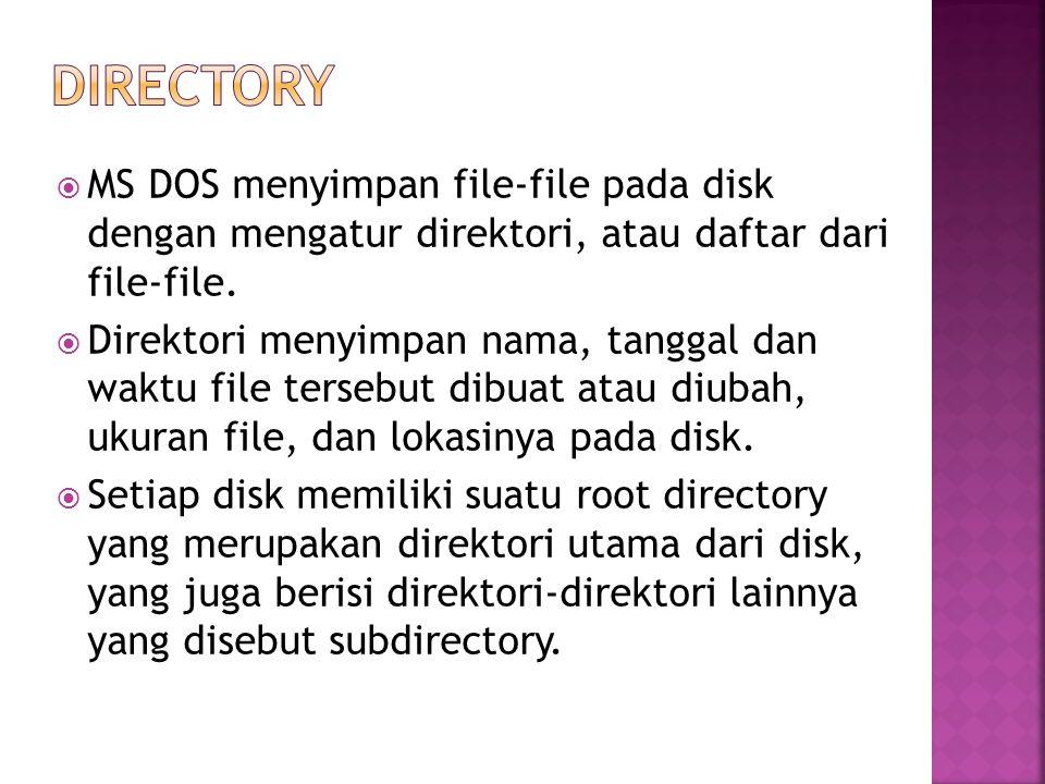  MS DOS menyimpan file-file pada disk dengan mengatur direktori, atau daftar dari file-file.  Direktori menyimpan nama, tanggal dan waktu file terse