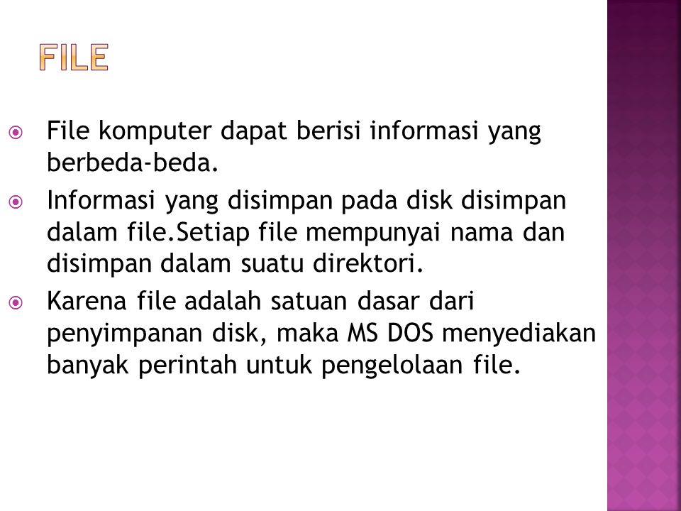  File komputer dapat berisi informasi yang berbeda-beda.  Informasi yang disimpan pada disk disimpan dalam file.Setiap file mempunyai nama dan disim