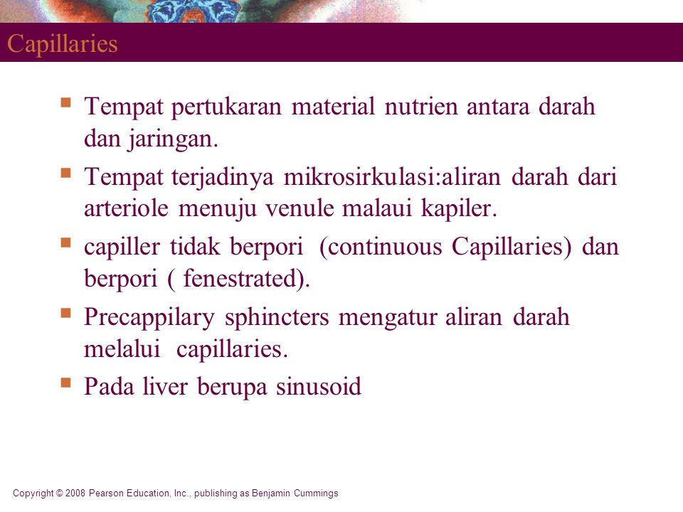 Copyright © 2008 Pearson Education, Inc., publishing as Benjamin Cummings Capillaries  Tempat pertukaran material nutrien antara darah dan jaringan.