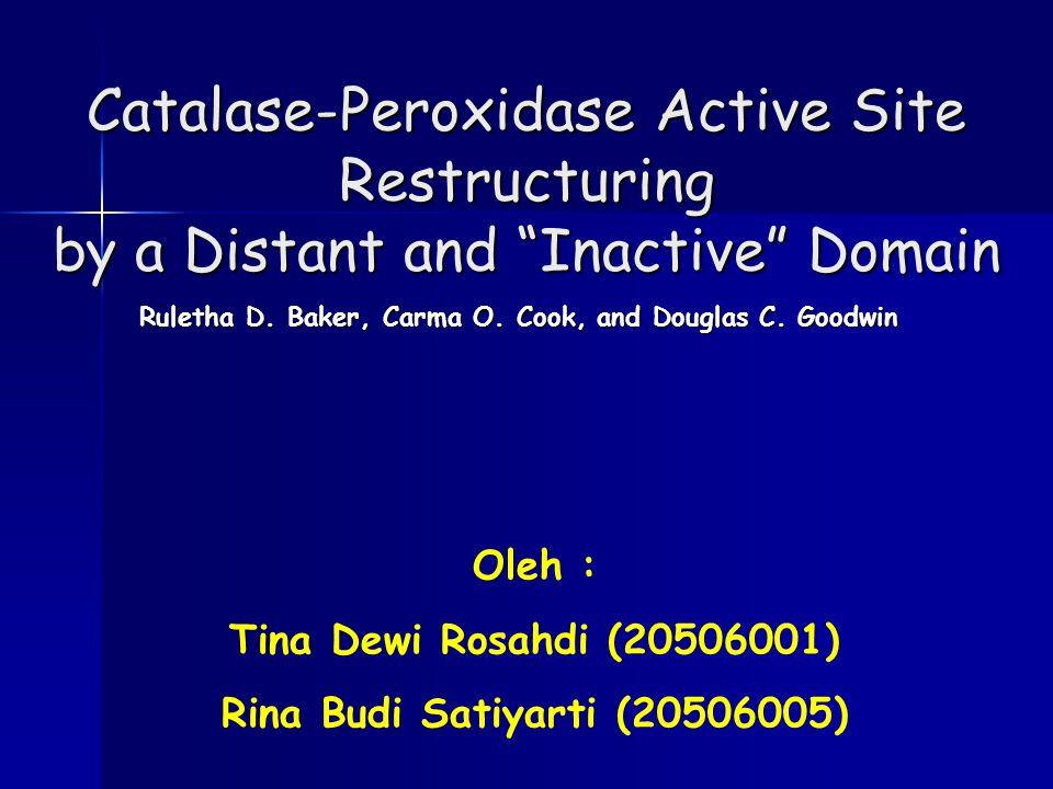 -Termasuk golongan enzim oksido reduktase -Dibentuk dari dua domain peroksidase, yaitu domain N- terminal (KatG N ) dan domain C-terminal (KatG C ) -Mempunyai satu sisi aktif multifungsional yang memfasilitasi aktivitas katalase dan peroksidase -Berperan dalam degradasi hidrogen peroksida (H 2 O 2 ) KatalaseKatalase-PeroksidasePeroksidase (KatG)