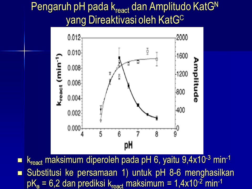 Pengaruh pH pada k react dan Amplitudo KatG N yang Direaktivasi oleh KatG C k react maksimum diperoleh pada pH 6, yaitu 9,4x10 -3 min -1 k react maksi