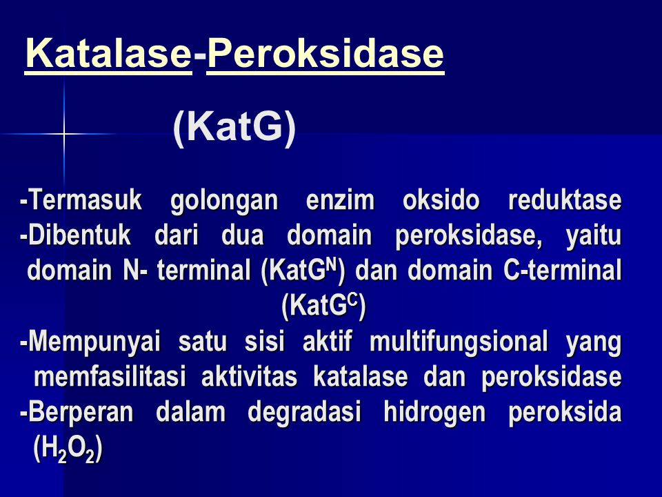 Pengaruh Ekspresi dan Isolasi KatG C pada Spektrum EPR KatG N KatG N KatG C + KatG N ( Penambahan equimolar ) KatG C + KatG N (Inkubasi selama 48 jam pada T=4 o C) Tipe alami KatG