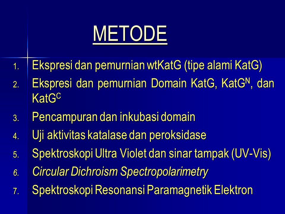 MMMM EEEE TTTT OOOO DDDD EEEE 1. Ekspresi dan pemurnian wtKatG (tipe alami KatG) 2. Ekspresi dan pemurnian Domain KatG, KatG N, dan KatG C 3. Pencampu