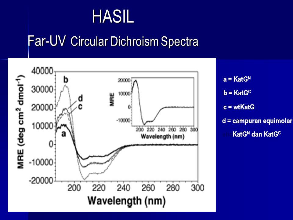Dari hasil CD Spectra diperoleh : oPoPoPoPersiapan pemisahan domain, KatGN dan KatGC, tidak dihasilkan pada gangguan mayor untuk isi struktur sekunder yang diharapkan untuk masing-masing domain dari enzim tipe alami oCoCoCoCampuran fisika KatGN dan KatGC tidak dengan jelas merubah isi struktur sekunder setiap protein