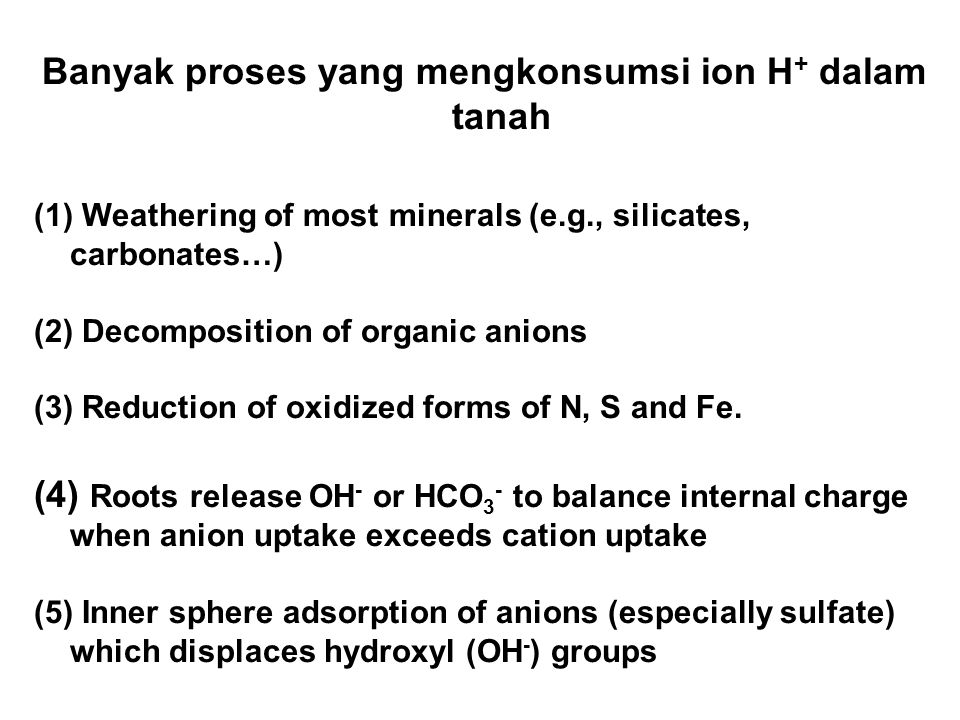Banyak proses yang mengkonsumsi ion H + dalam tanah (1) Weathering of most minerals (e.g., silicates, carbonates…) (2) Decomposition of organic anions (3) Reduction of oxidized forms of N, S and Fe.