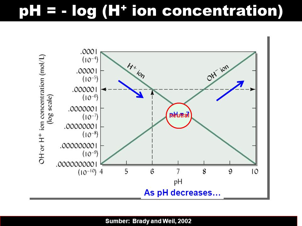 pH = - log (H + ion concentration) Sumber: Brady and Weil, 2002 As pH increases… As pH decreases… pH = 7 neutral