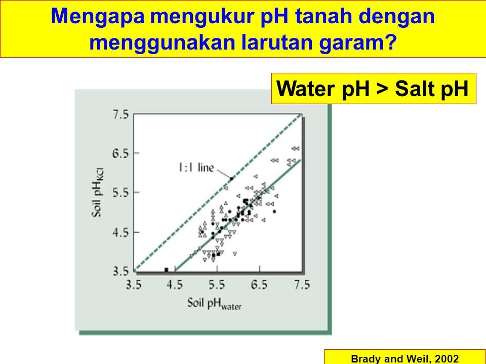 Water pH > Salt pH Brady and Weil, 2002 Mengapa mengukur pH tanah dengan menggunakan larutan garam?