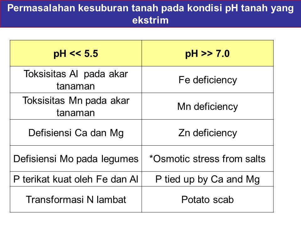 pH << 5.5pH >> 7.0 Toksisitas Al pada akar tanaman Fe deficiency Toksisitas Mn pada akar tanaman Mn deficiency Defisiensi Ca dan MgZn deficiency Defis