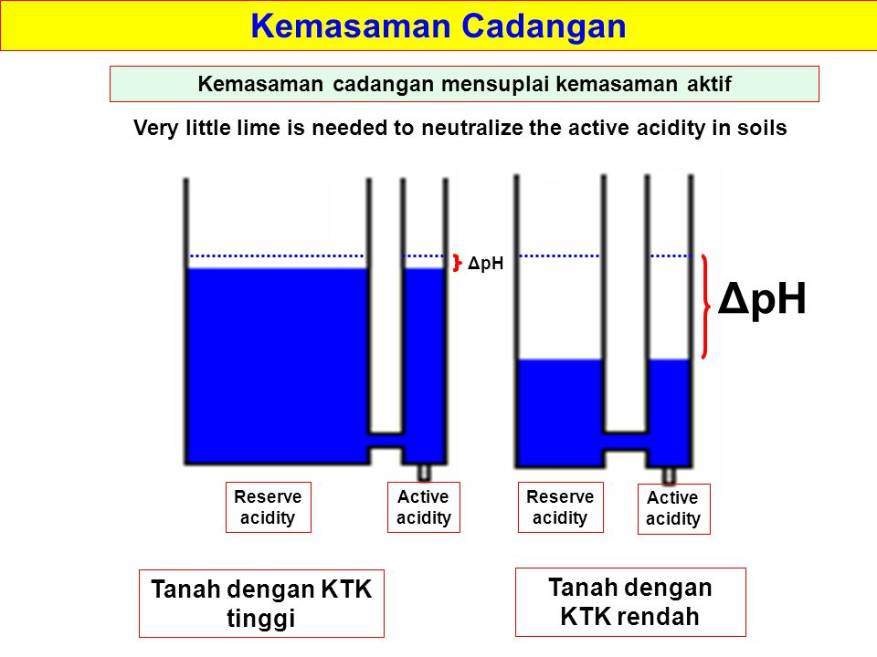 Kemasaman Cadangan Reserve acidity Reserve acidity Active acidity Active acidity Very little lime is needed to neutralize the active acidity in soils Kemasaman cadangan mensuplai kemasaman aktif Tanah dengan KTK tinggi Tanah dengan KTK rendah ΔpH
