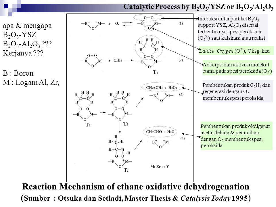 Reaction Mechanism of ethane oxidative dehydrogenation ( Sumber : Otsuka dan Setiadi, Master Thesis & Catalysis Today 1995 ) Interaksi antar partikel