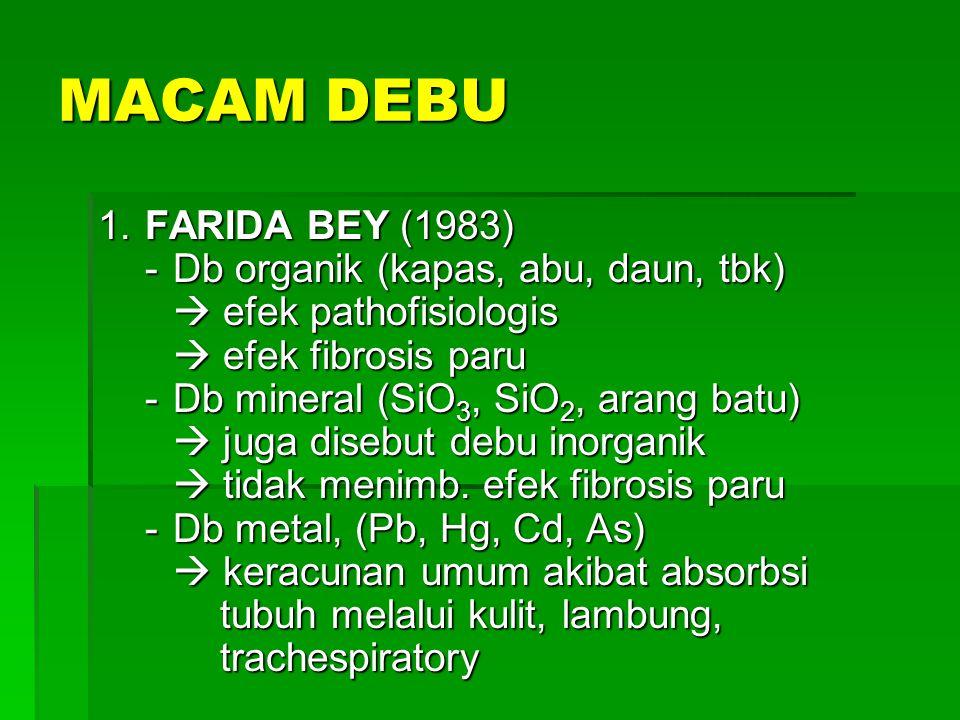 MACAM DEBU 2.