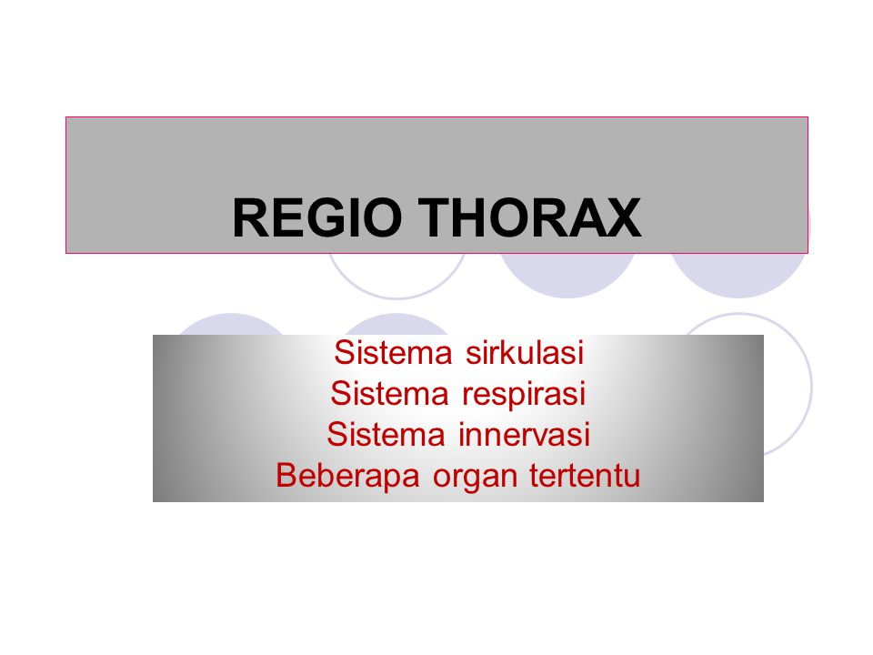 Cavum thorax Rongga kerucut relatip pendek dan agak pipih Berisi: M.longus colli, Trachea, Oesophagus.