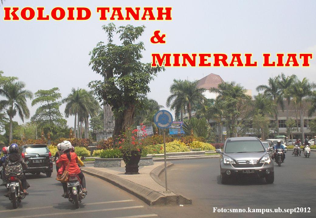Diunduh dari sumber: http://www.malvern.com/labeng/technology/zeta_potential/zeta_potential_lde.htm …….