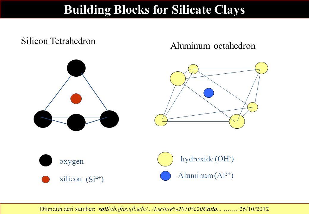 oxygen silicon (Si 4+ ) hydroxide (OH - ) Aluminum (Al 3+ ) Silicon Tetrahedron Aluminum octahedron Building Blocks for Silicate Clays Diunduh dari su
