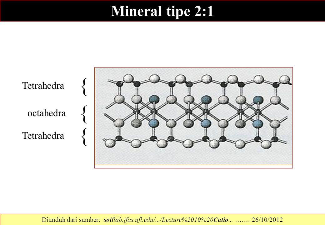 Tetrahedra octahedra { { Tetrahedra { Mineral tipe 2:1 Diunduh dari sumber: soillab.ifas.ufl.edu/.../Lecture%2010%20Catio... ……. 26/10/2012