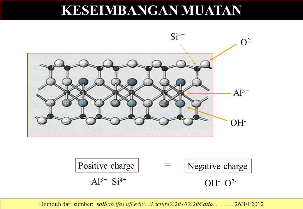 Positive charge Al 3+ Si 4+ Negative charge OH - O 2- KESEIMBANGAN MUATAN Al 3+ Si 4+ OH - O 2- = Diunduh dari sumber: soillab.ifas.ufl.edu/.../Lectur