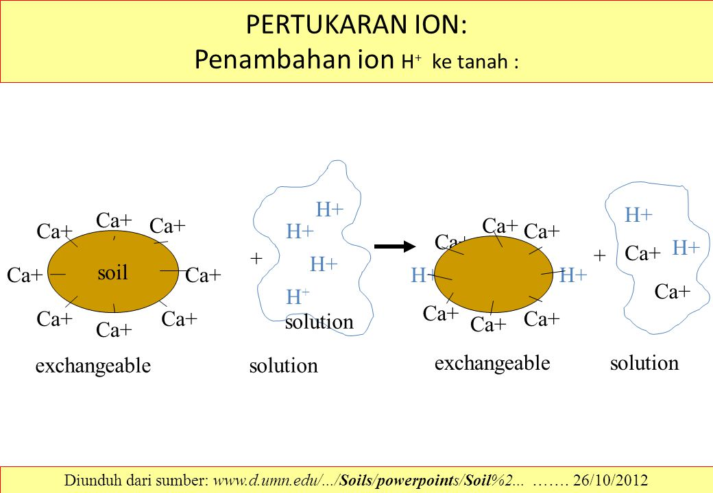 PERTUKARAN ION: Penambahan ion H + ke tanah : soil Ca+ + H+H+ H+ solution exchangeablesolution + H+ Ca+ exchangeablesolution Diunduh dari sumber: www.