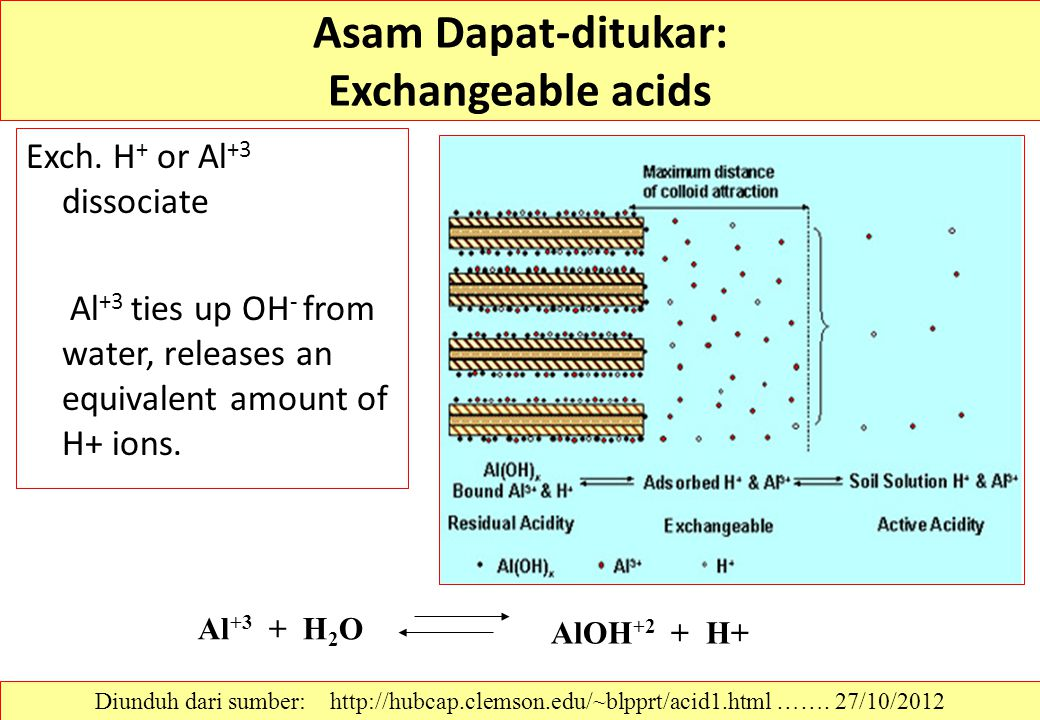 Asam Dapat-ditukar: Exchangeable acids Exch. H + or Al +3 dissociate Al +3 ties up OH - from water, releases an equivalent amount of H+ ions. Al +3 +