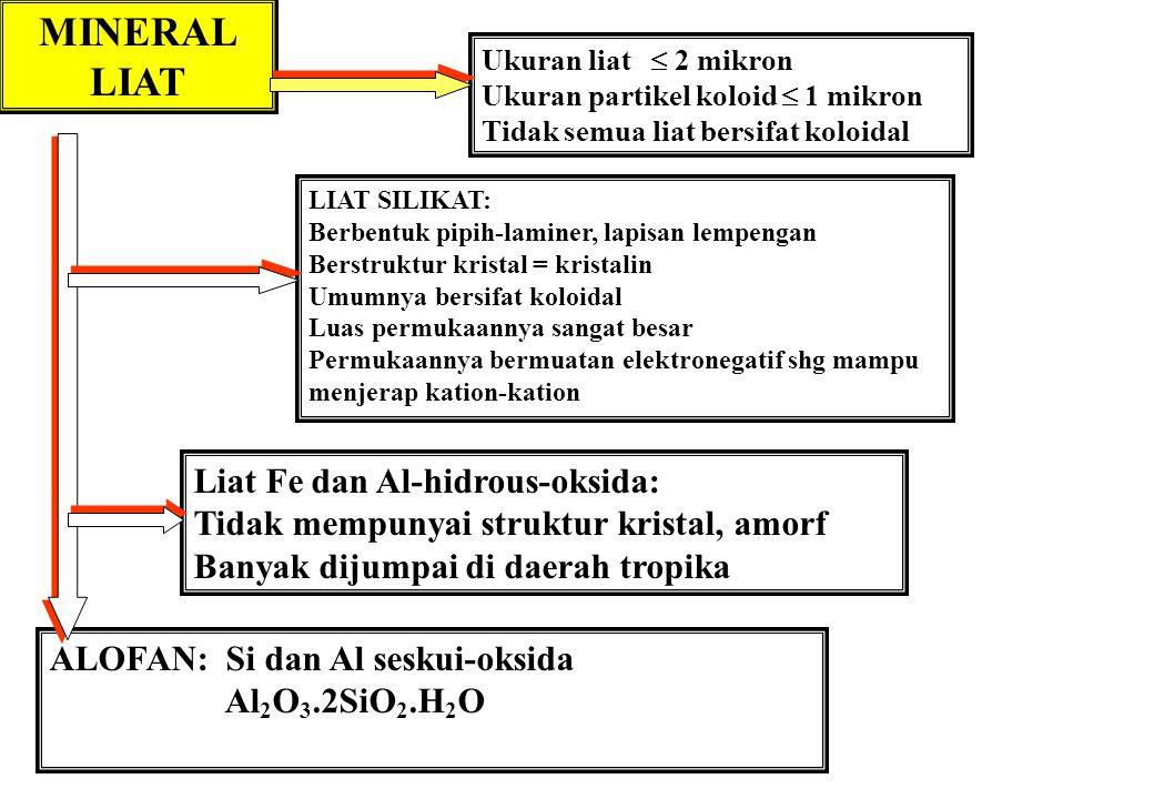 MINERAL LIAT Ukuran liat  2 mikron Ukuran partikel koloid  1 mikron Tidak semua liat bersifat koloidal LIAT SILIKAT: Berbentuk pipih-laminer, lapisa