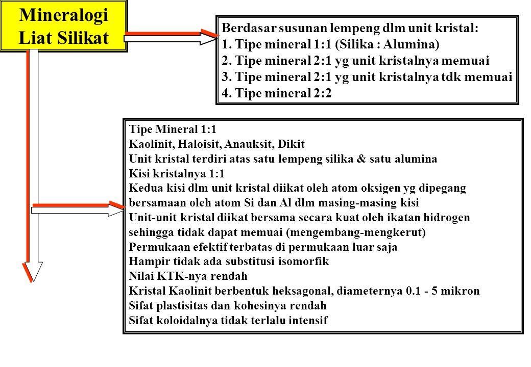 Mineralogi Liat Silikat Berdasar susunan lempeng dlm unit kristal: 1. Tipe mineral 1:1 (Silika : Alumina) 2. Tipe mineral 2:1 yg unit kristalnya memua