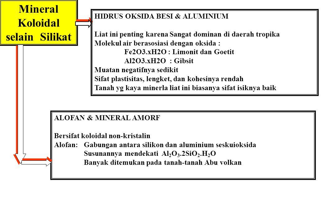 Mineral Koloidal selain Silikat ALOFAN & MINERAL AMORF Bersifat koloidal non-kristalin Alofan: Gabungan antara silikon dan aluminium seskuioksida Susu