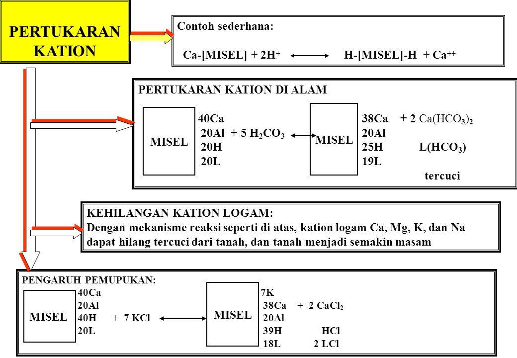 PERTUKARAN KATION Contoh sederhana: Ca-[MISEL] + 2H + H-[MISEL]-H + Ca ++ PERTUKARAN KATION DI ALAM 40Ca 38Ca + 2 Ca(HCO 3 ) 2 20Al + 5 H 2 CO 3 20Al