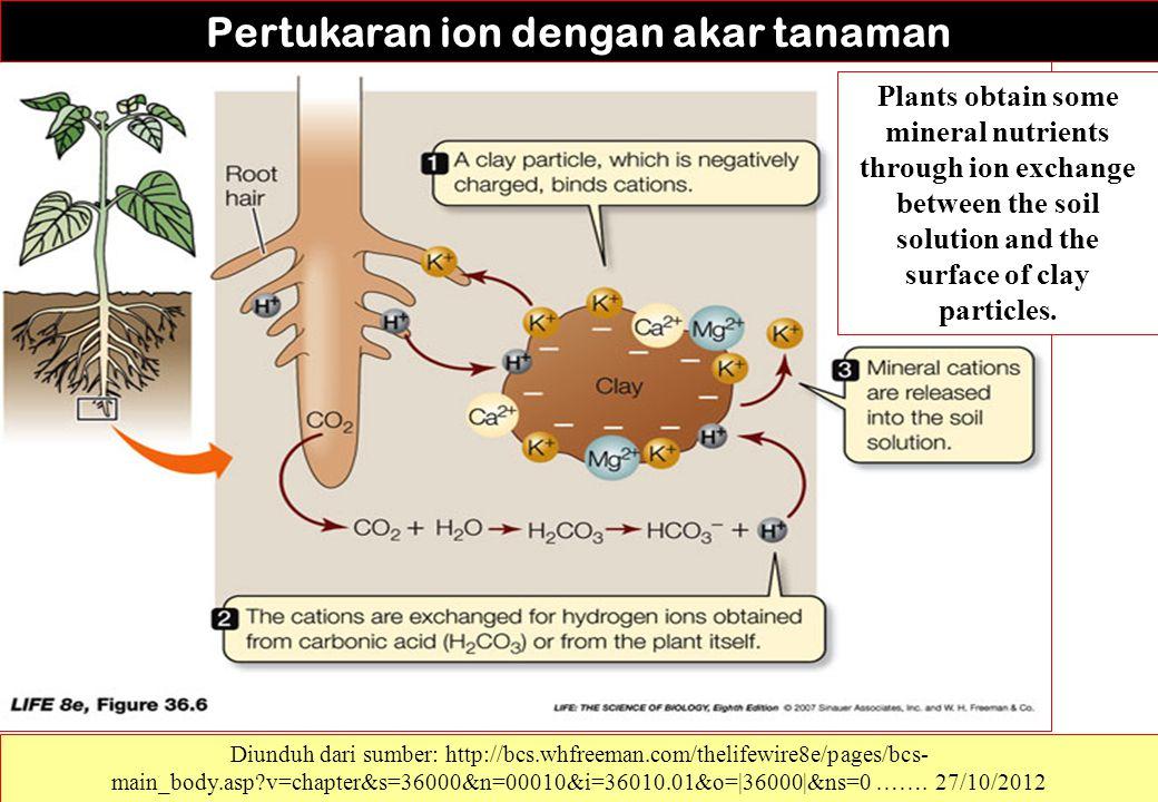 Pertukaran ion dengan akar tanaman Diunduh dari sumber: http://bcs.whfreeman.com/thelifewire8e/pages/bcs- main_body.asp?v=chapter&s=36000&n=00010&i=36