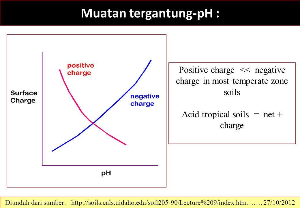 Muatan tergantung-pH : Diunduh dari sumber: http://soils.cals.uidaho.edu/soil205-90/Lecture%209/index.htm……. 27/10/2012 Positive charge << negative ch