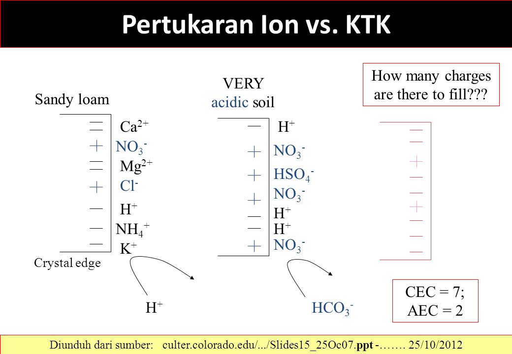 Pertukaran Ion vs. KTK Sandy loam VERY acidic soil How many charges are there to fill??? NH 4 + Ca 2+ H+H+ Mg 2+ K+K+ NO 3 - Cl - H+H+ H+H+ NO 3 - H+H