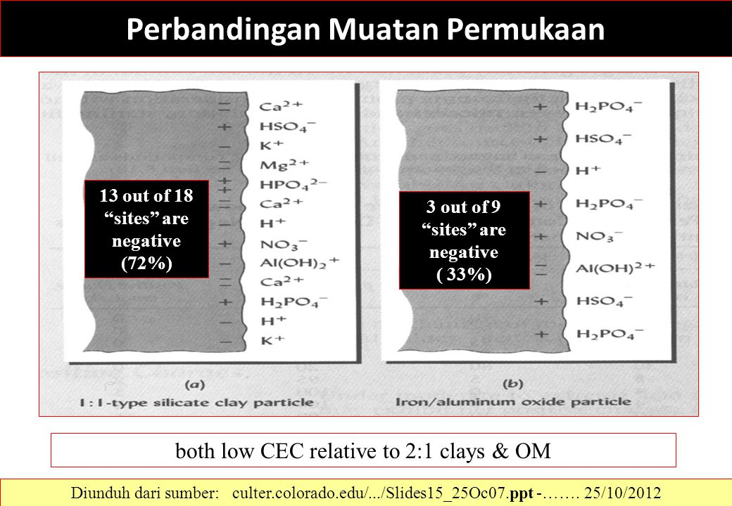 "Perbandingan Muatan Permukaan 13 out of 18 ""sites"" are negative (72%) 3 out of 9 ""sites"" are negative ( 33%) both low CEC relative to 2:1 clays & OM D"